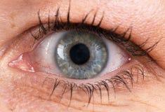 Primer de un ojo Fotografía de archivo