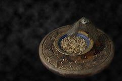 Primer de un pájaro sobre un cuenco de la comida Fotografía de archivo