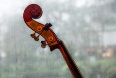 Primer de un violoncelo, foco en el cuello y la voluta imagenes de archivo