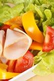 Primer de una ensalada mezclada con el pavo de la carne asada Imagen de archivo