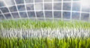 Primer de una línea de meta del fútbol Imagen de archivo libre de regalías