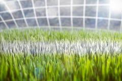 Primer de una línea de meta del fútbol Foto de archivo libre de regalías