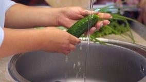 Primer de una mujer que lava los pepinos frescos en el fregadero de cocina C?mara lenta almacen de metraje de vídeo