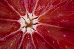 Primer de una naranja de sangre del corte foto de archivo libre de regalías