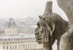 Primer de una quimera de Notre-Dame del franco de la catedral de París imagen de archivo