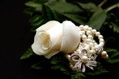 Primer de una Rose blanca con las perlas Foto de archivo libre de regalías