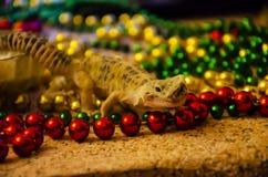 Primer de una salamandra del leopardo que vierte en Nochevieja Comenzamos el Año Nuevo en una nueva piel fotos de archivo libres de regalías
