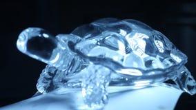 Primer decorativo del pedazo de Crystal Tortoise metrajes