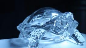 Primer decorativo del pedazo de Crystal Tortoise almacen de metraje de vídeo