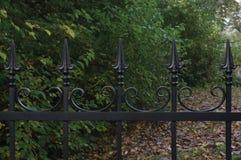 Primer decorativo negro forjado de la cerca del hierro labrado, fondo otoñal de los árboles, hojas caidas, parque grande horizont Imagen de archivo libre de regalías