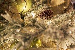 Primer del árbol de navidad Imagen de archivo libre de regalías