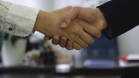 Primer del apretón de manos en el fondo de la oficina El buen negocio aseguró sociedad con el apretón de manos Dos compañeros de  almacen de metraje de vídeo