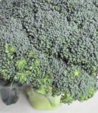 Primer del bróculi Fotografía de archivo libre de regalías