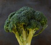 Primer del bróculi Foto de archivo libre de regalías