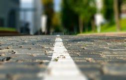 primer del camino de la piedra de pavimentación del Inclinación-cambio Hierba verde y árboles en s Foto de archivo libre de regalías