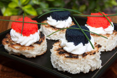 Primer del caviar Canapés Imagen de archivo