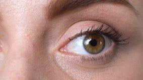 Primer del centelleo femenino, síndrome sufridor del ojo seco, cansancio de los problemas de la visión metrajes