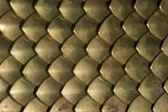 Primer del chainmail de la placa de cobre amarillo Imágenes de archivo libres de regalías
