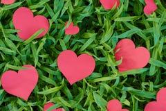 Primer del corazones rojos en la hierba Fotografía de archivo