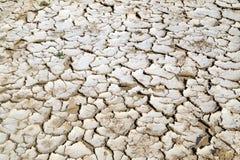 Primer del fondo agrietado seco de la tierra, textura del desierto de la arcilla Imagenes de archivo