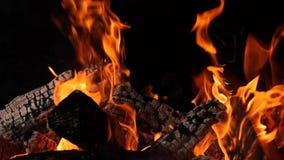 Primer del fuego ardiente, llamas que queman en el fondo negro, c?mara lenta almacen de video