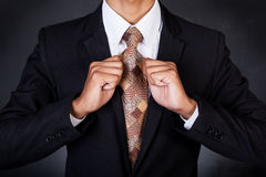 Primer del hombre de negocios que fija su corbata Fotografía de archivo libre de regalías