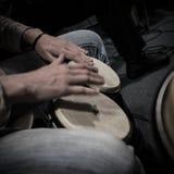 Primer del jugador del bongo Foto de archivo libre de regalías