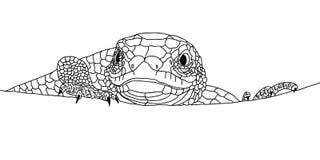 Primer del lagarto Cabeza, ojos y garras Imagen del garabato Fotos de archivo libres de regalías