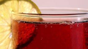 Primer del levantamiento carbónico rojo de las burbujas de la bebida almacen de video