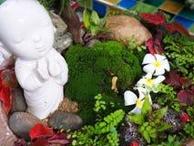 Primer del mini jardín con los pequeños árboles y flores Fotografía de archivo