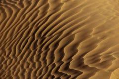 Primer del modelo de la arena del desierto Fotos de archivo