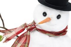 Primer del muñeco de nieve foto de archivo libre de regalías