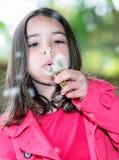 Primer del niño lindo que sopla en una flor que se coloca en un parque Fotografía de archivo