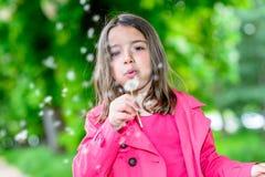 Primer del niño lindo que sopla en una flor que se coloca en un parque Fotos de archivo