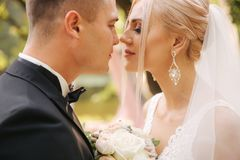 Primer del novio que besa a la novia maquillaje y peinado hermosos Retrato de pares preciosos foto de archivo