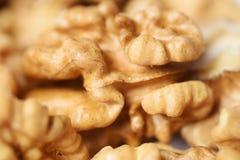 Primer del Nutmeat Imágenes de archivo libres de regalías