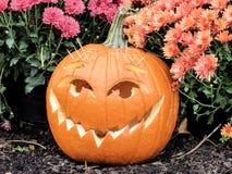 Primer del o& x27 Carved Halloween Jack; Linterna Imagenes de archivo