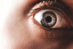 Primer del ojo azul de un hombre asustado Fotografía de archivo libre de regalías
