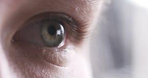 Primer del ojo del adolescente sin el maquillaje que mira derecho Imágenes de archivo libres de regalías