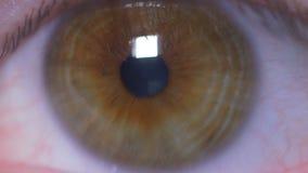 Primer del ojo del hombre almacen de metraje de vídeo