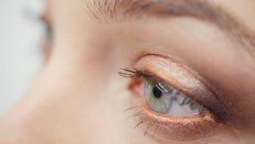 Primer del ojo femenino azul metrajes