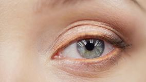 Primer del ojo femenino azul que mira la cámara almacen de video