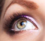 Primer del ojo hermoso con maquillaje atractivo Fotos de archivo
