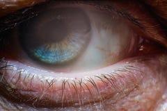 Primer del ojo humano Fotografía de archivo
