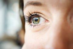 Primer del ojo verde de la mujer Foto de archivo libre de regalías