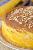 Primer del pastel de queso de la calabaza Imagenes de archivo