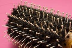 Primer del pelo caido en el cepillo para el pelo, problemas con el pelo imagen de archivo libre de regalías