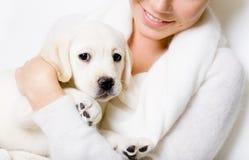 Primer del perrito lindo en las manos de la mujer Fotografía de archivo