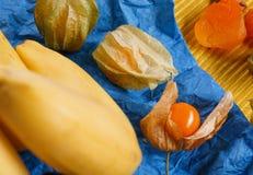 Primer del physalis sin pelar brillante, plátanos amarillos, albaricoques secados de la naranja en servilleta en un fondo colorid Fotografía de archivo libre de regalías