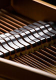 Primer del piano magnífico Fotos de archivo libres de regalías
